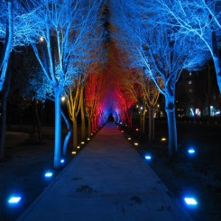 چراغ زیر درختی تک رنگ و فول کالر