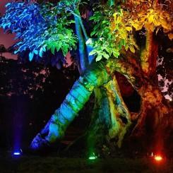 چراغ زیر درختی 3 وات ، 6 وات ، 9 وات ، 12 وات ، 18 وات ، 24 وات ، 36 وات
