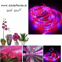 ریسه نواری رشد گیاه ، چراغ رشد گیاه ( Grow Light )