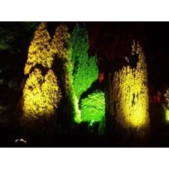 چراغ زیر درختی زانویی ۲۴ وات