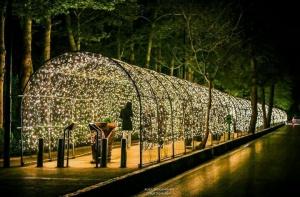 تونل نوری ، گیف تونل نوری ، تونلهای نوری ، تونل های نوری