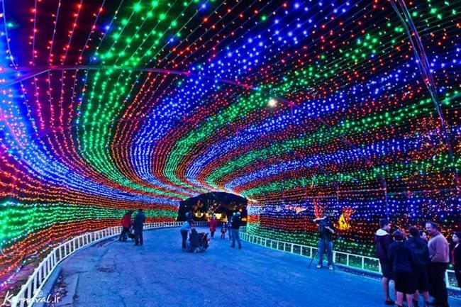 ریسه توری تونل نوری ، ریسه تونلی نور ، ریسه تونل نوری Rgb