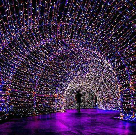ریسه تونل نوری ، ریسه سوزنی ، تونل نوری ریسه ای ، تونل دیجیتال
