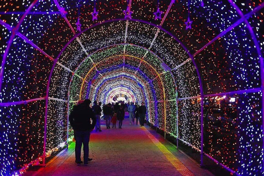 انواع تونل نوری ، انواع نور تونل