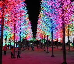 نورپردازی درخت ، نورپردازی بوته ، نورپردازی باغچه ، نورپردازی چمن
