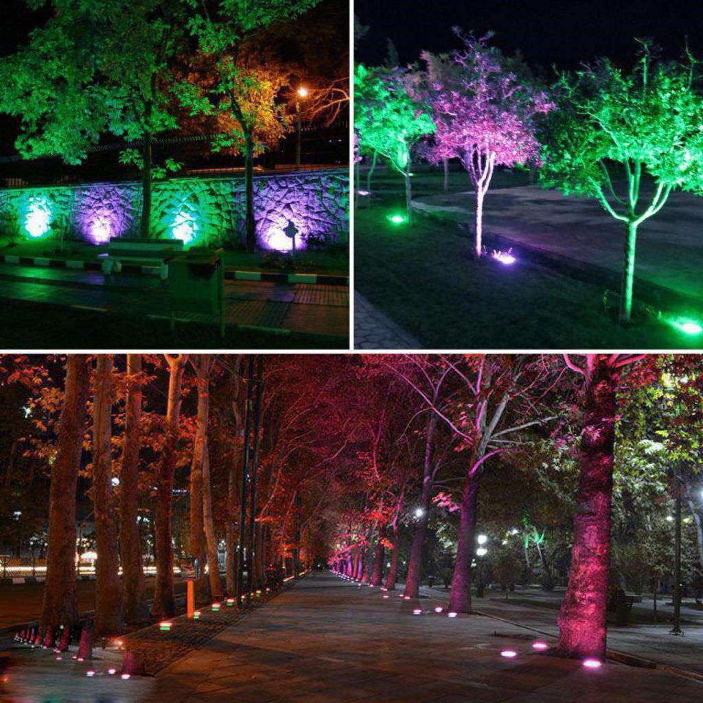 یردرختی ، نور پردازی درختان ، دفنی ، چراغ درختی
