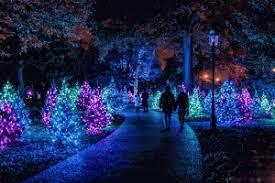 نورپردازی خیابان ، نورپردازی فضای شهری ، نور درختان