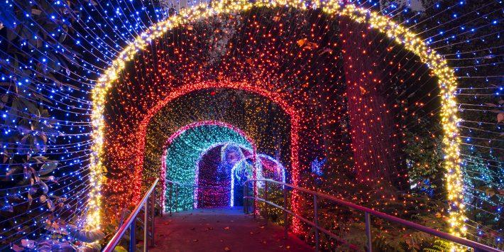 نورپردازی تونلها ، روشنای تونلی ، روشنایی تونل
